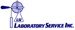 LSI_logo_home